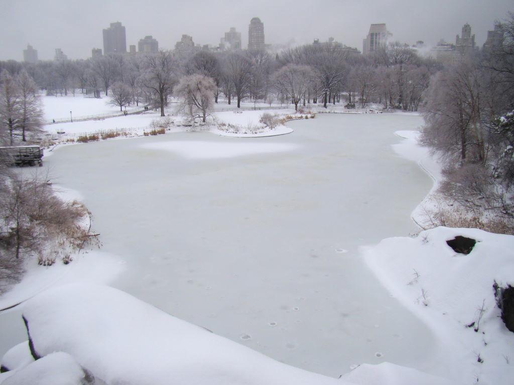 Vista do Belvedere Castle - Parque em Nova York? Central Park!