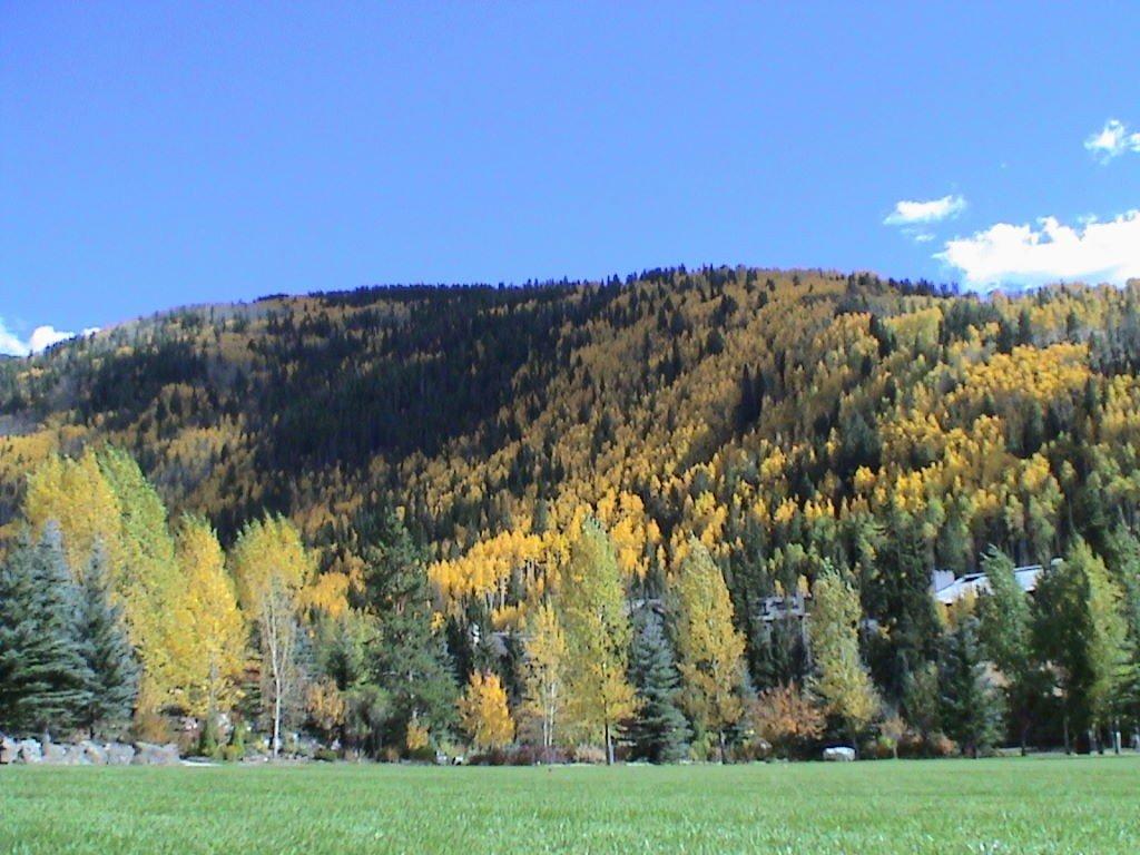 Vail no outono - Estação de Esqui Vail Colorado EUA - Dicas