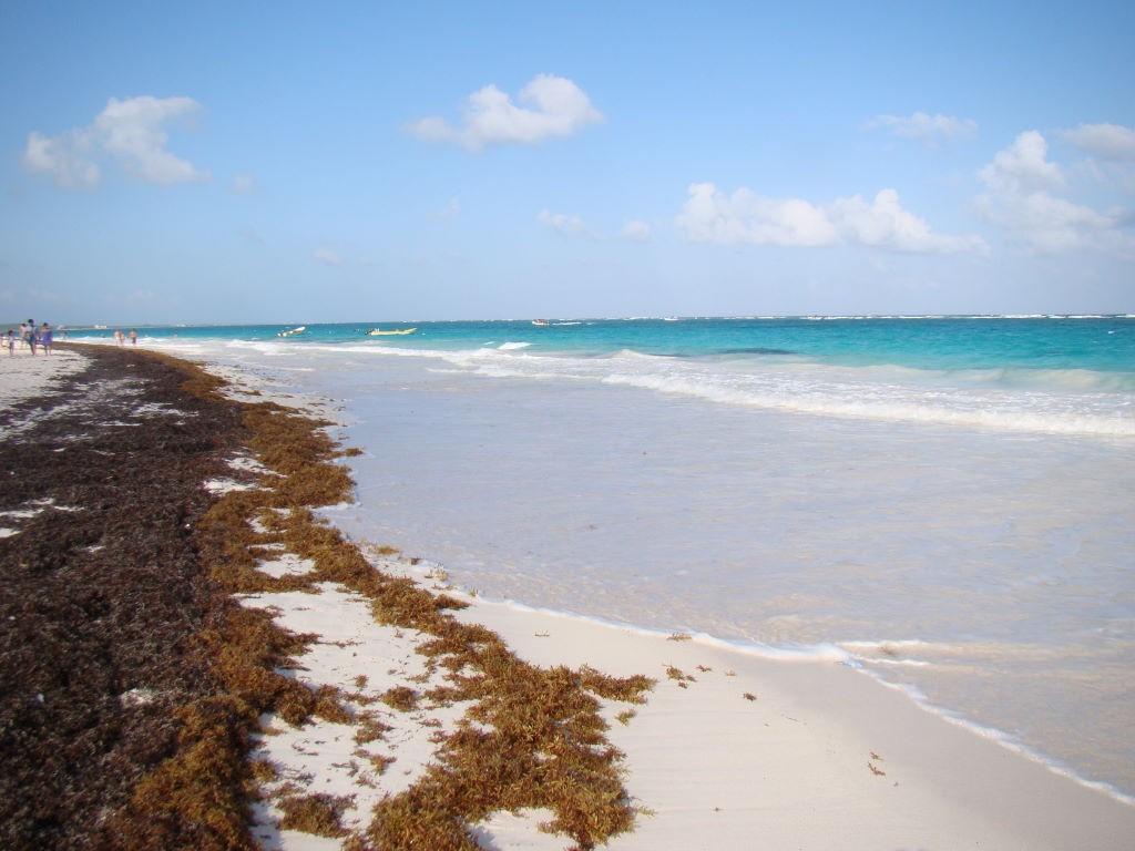 Praia de Santa Fé ao lado de Tulum