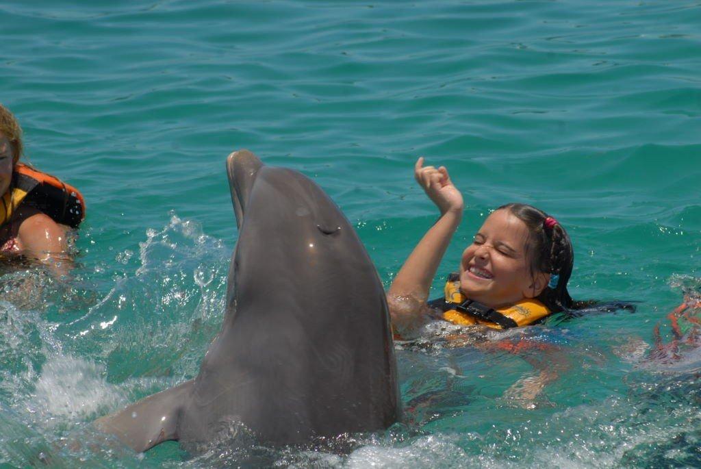 Nadar com golfinhos em Isla Mujeres - Riviera Maia e Isla Mujeres - O que fazer