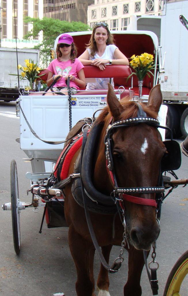 Passeio de carruagem - Parque em Nova York? Central Park!