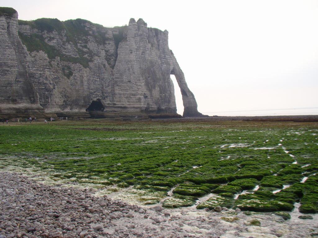 Porte D''Aval, Étretat, Normandia, França
