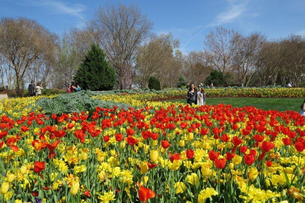 Jardim Botânico de Dallas