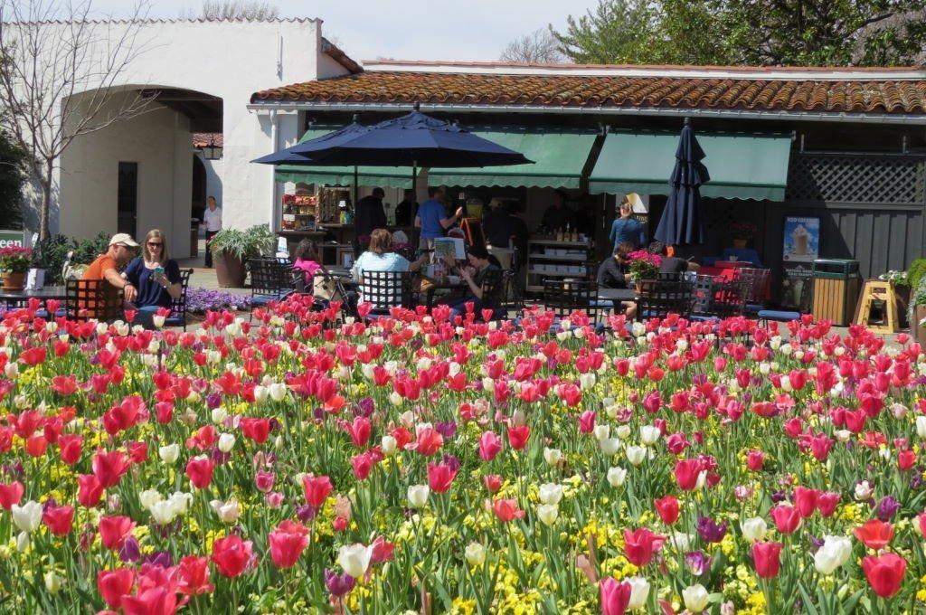Lanchonete no Hunt Paseo de Flores - O que fazer em Dallas? Jardim Botânico!