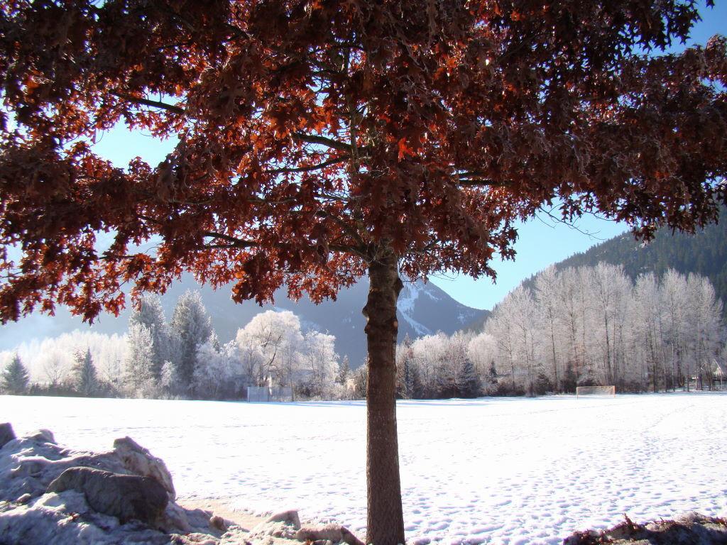 Pemberton - O que fazer em Whistler Canadá além de esquiar
