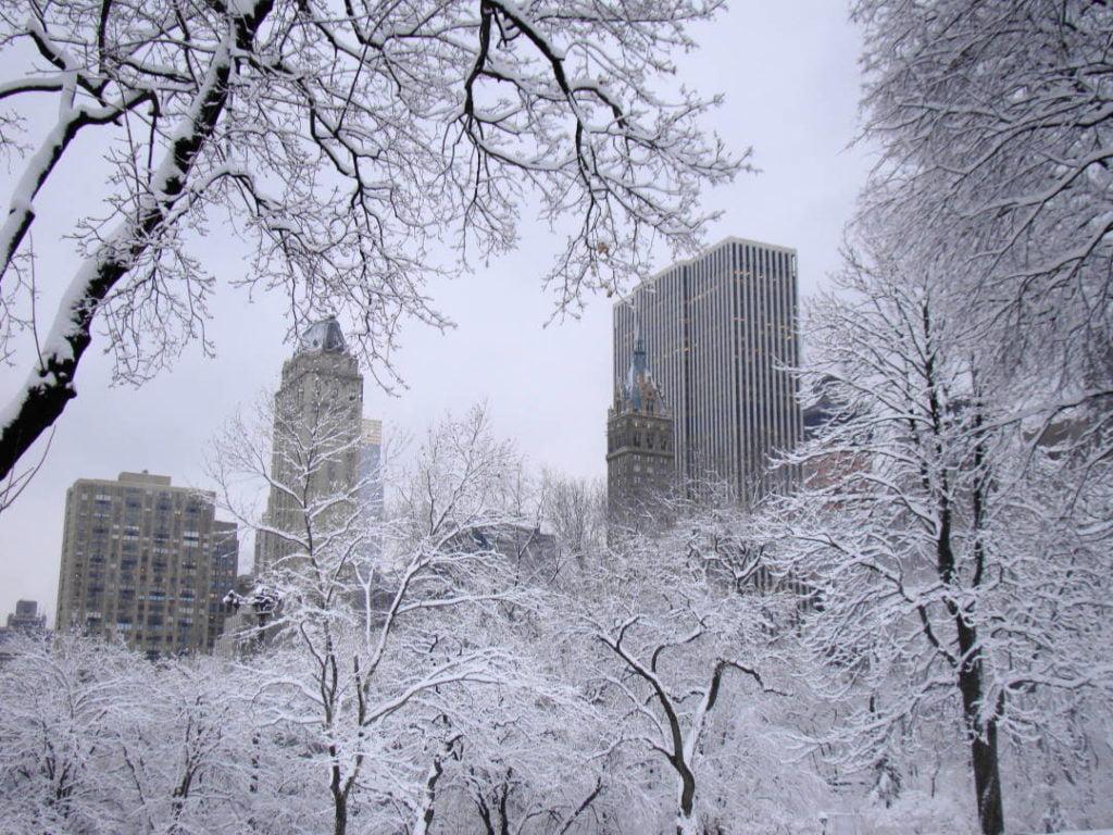 Central Park - O que fazer em Nova York no inverno - Com neve!
