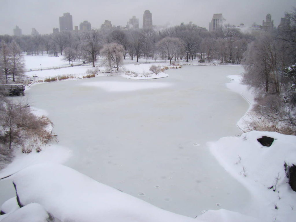 Belvedere Castle no Central Park - O que fazer em Nova York no inverno - Com neve!