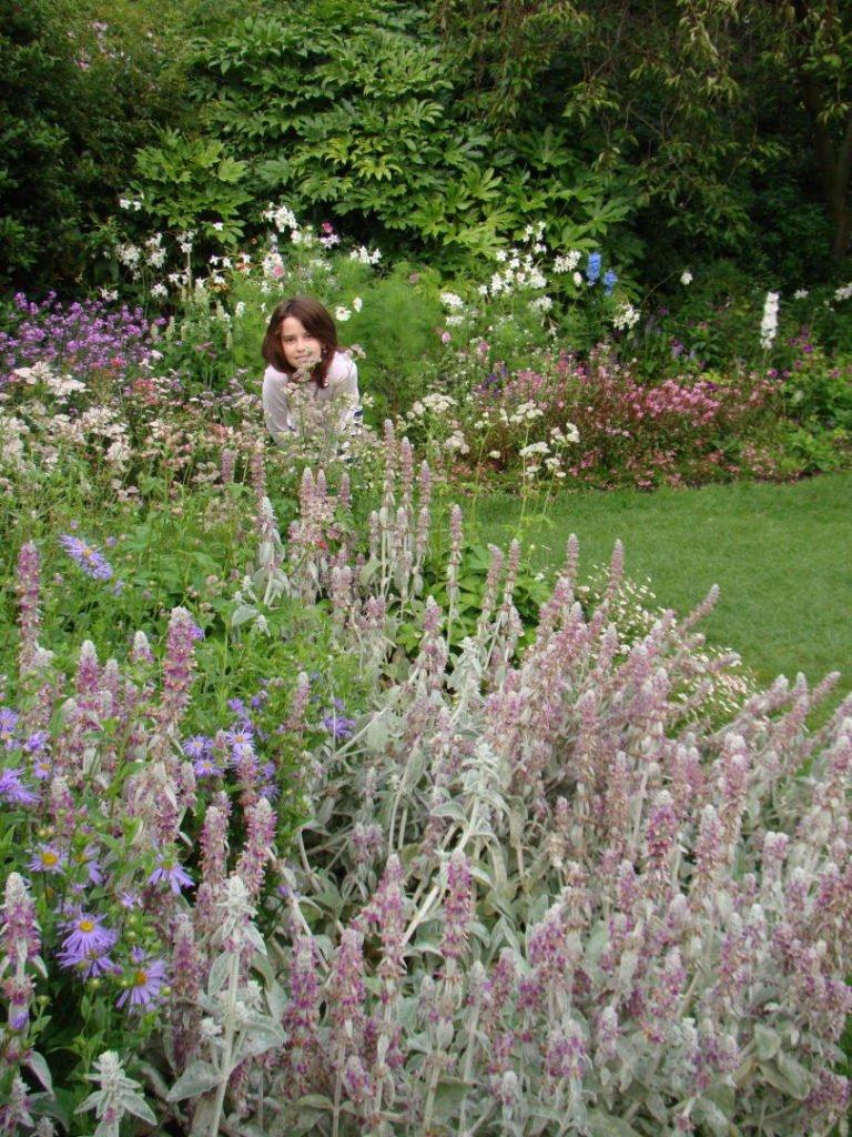 St. James Park - Parques em Londres que valem a visita!