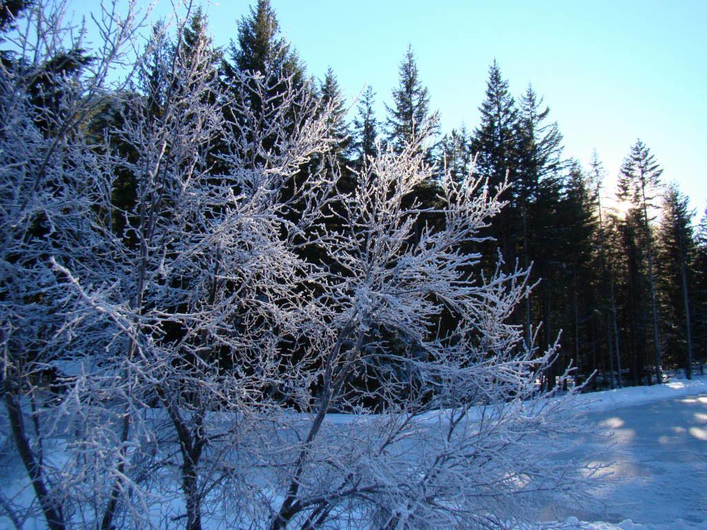 Nairn Falls -  O que fazer em Whistler Canadá além de esquiar