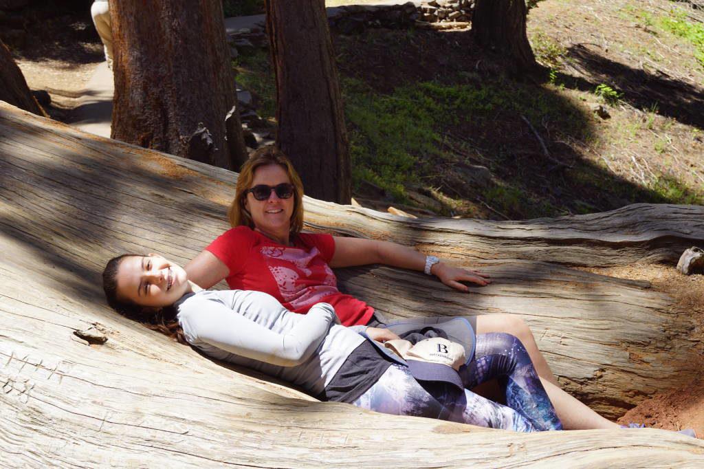 Congress Trail - Parque Nacional da Sequoia Califórnia