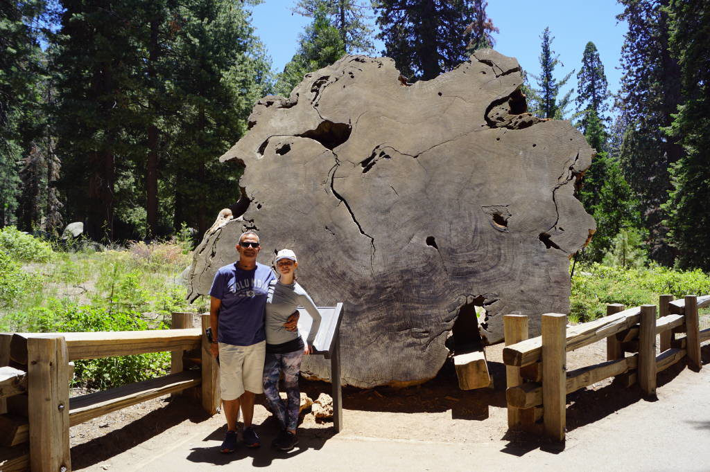 General Sherman Trail - Parque Nacional da Sequoia Califórnia