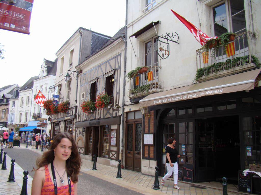 Amboise - Castelos na França - Os 5 Top no Vale do Loire