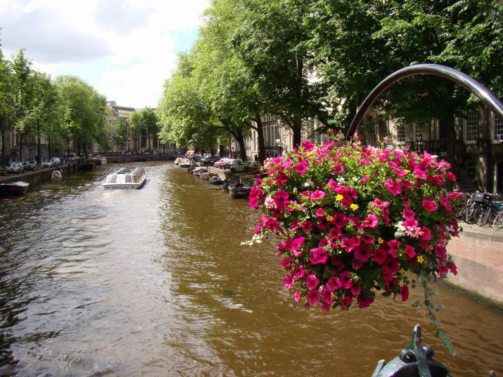 Roteiro o que fazer em Amsterdam em 3, 4, 5 ou 6 dias!