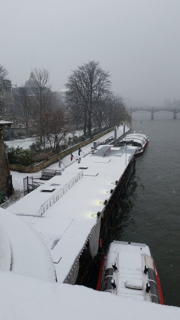 Vedettes du Pont Neuf - Viajar para Paris no inverno com neve!