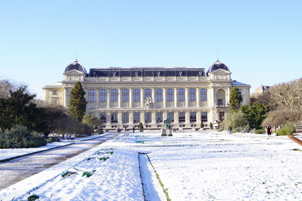 Jardim Botânico e Museu de História Natural - Viajar para Paris no inverno com neve!