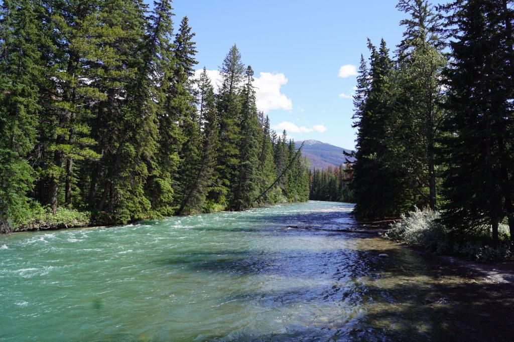 6ª Ponte do Maligne Canyon - O que fazer no Parque Nacional Jasper Canadá