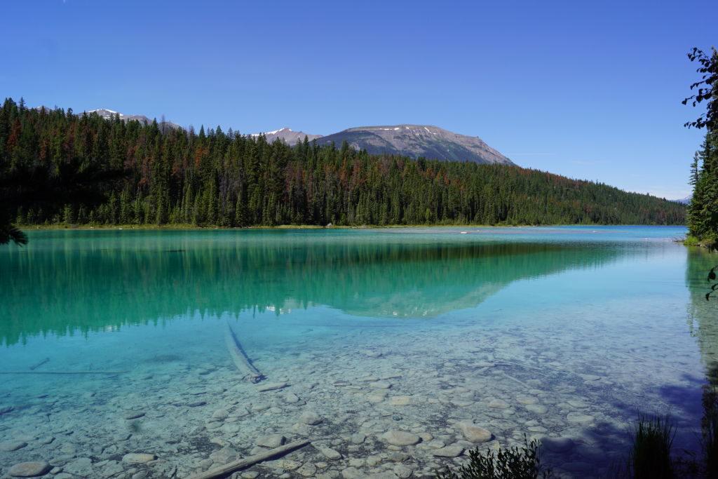 1º Lago no Vale dos 5 Lagos - O que fazer no Parque Nacional Jasper Canadá