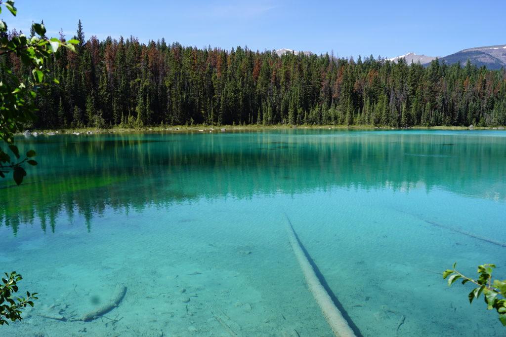 1º Lago na Trilha Vale dos 5 Lagos - O que fazer no Parque Nacional Jasper Canadá