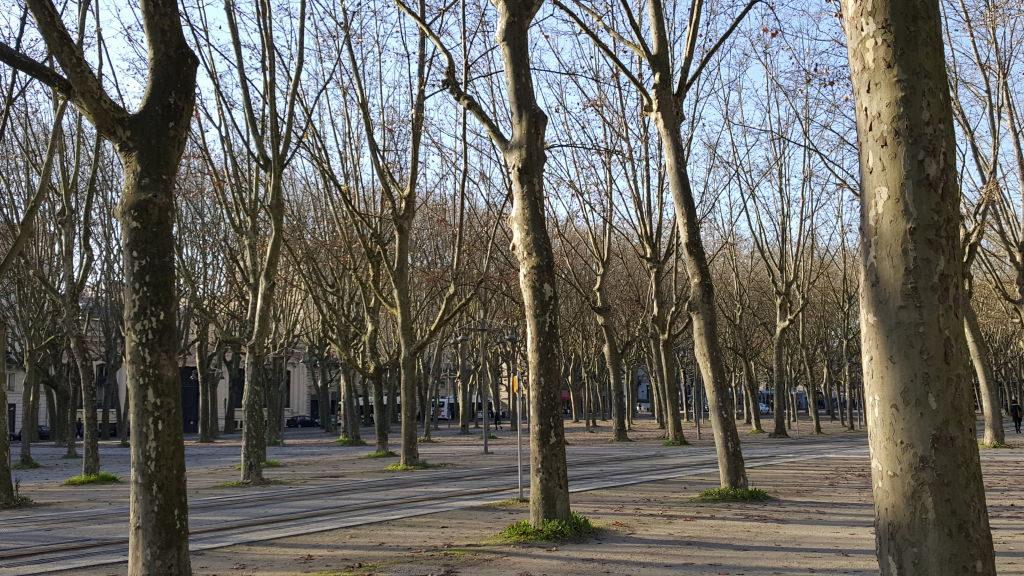 Esplanada de Quinconces - Bordeaux França: Cidade do Vinho, Duna de Pilat e muito mais!