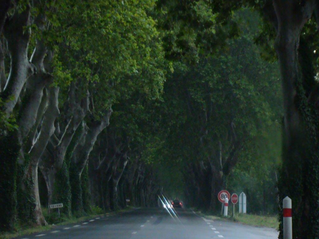 Estrada entre Les_Baux-de-Provence e Roussillion - O que fazer em Les-Baux-de-Provence
