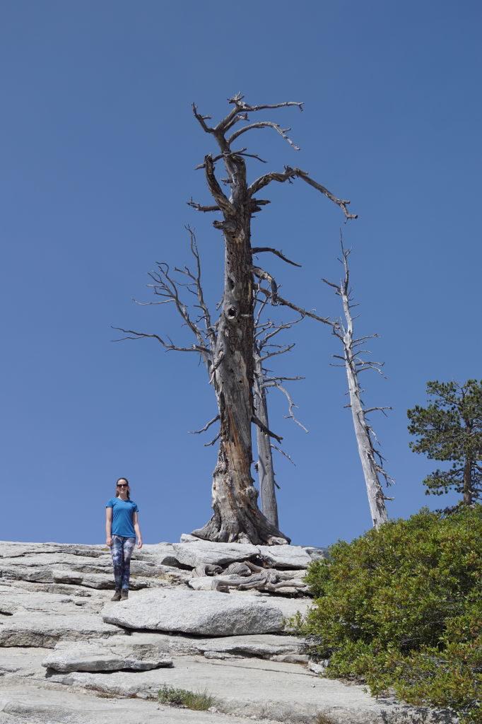 Sentinel Dome - O que fazer no Parque Nacional Yosemite na Califórnia