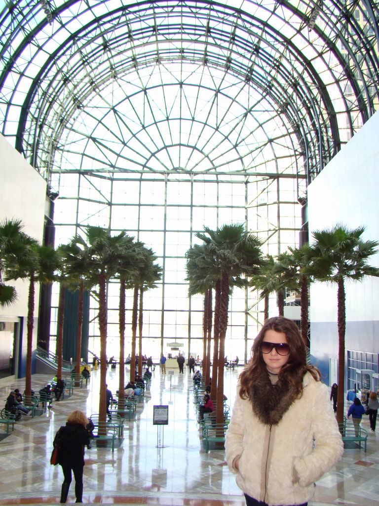 World Financial Center - O que fazer em Nova York no inverno - Com neve!