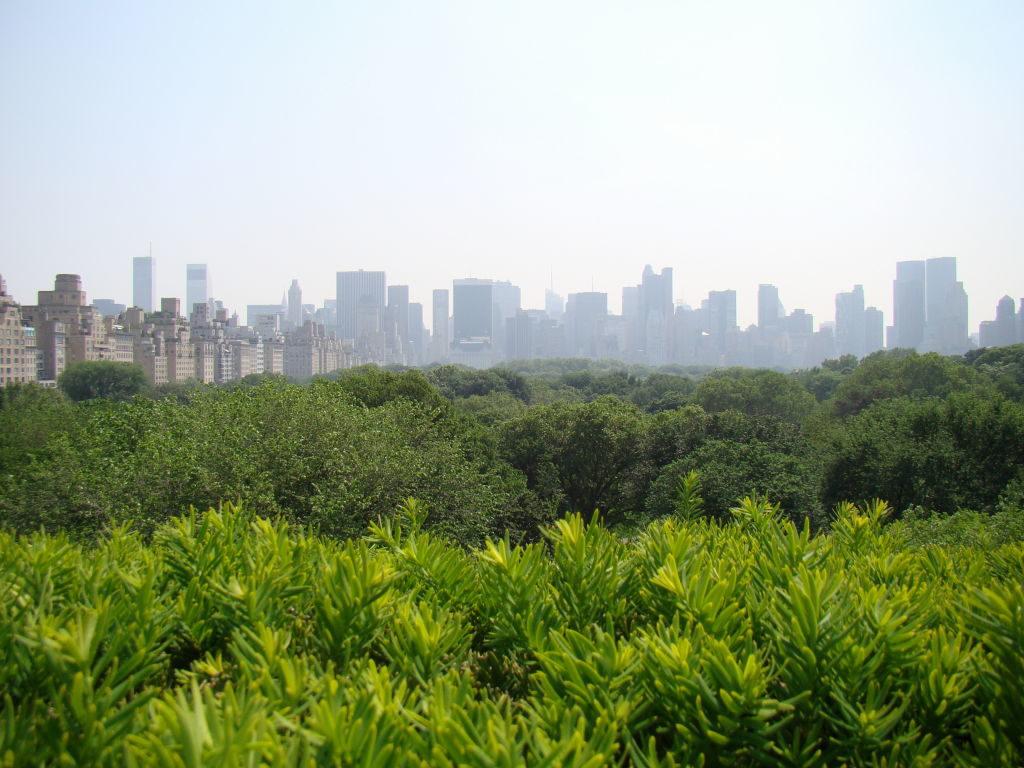 Terraço do Metropolitan Museum - Principais Pontos Turísticos de Nova York
